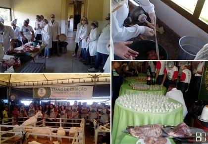 Difusão e incentivo ao desenvolvimento da caprinocultura