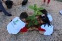 Crianças plantando mudas na Reitoria
