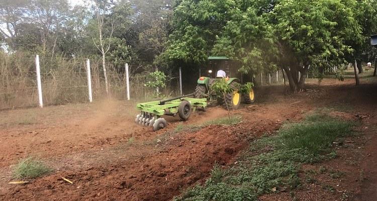 Campus Palmas implanta duas novas estações de inovação agrotecnológica: mandiocultura e grãos em foco
