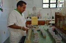 Laboratório é referência na análise de solos
